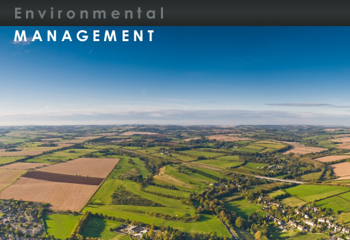 Owen Environmental Management